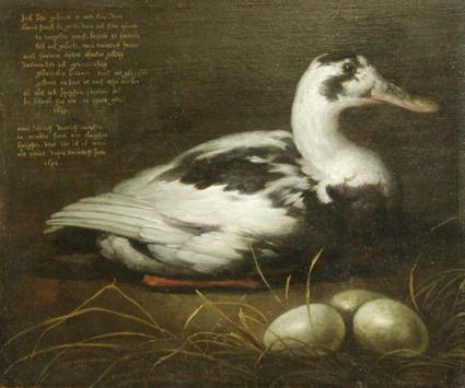 aelbert cuyp, portret van de eend sijctghen