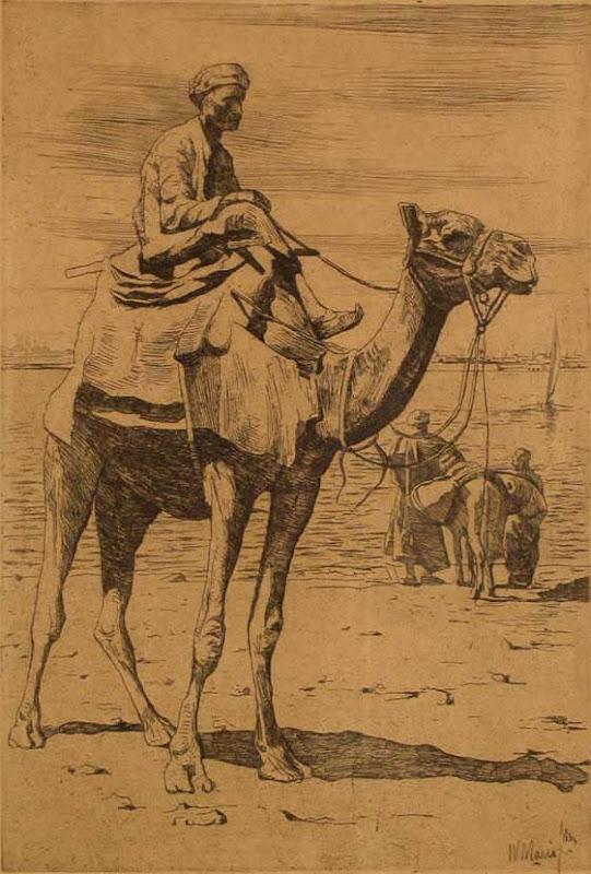willem maris, kameel
