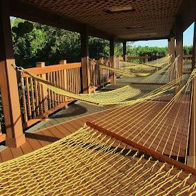 Hammocks by Darlene Lankford Honeycutt - Artistic Objects Other Objects ( destinations, patterns, hammocks, florida, best photo of 2013, dl honeycutt, tampa bay,  )