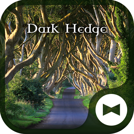 Fantasy Wallpaper Dark Hedge Theme Icon