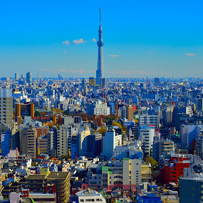 Tokyo Sky Tree and the City by Kamal Kamaludin - Buildings & Architecture Public & Historical ( japan tokyo tree building tower sky asia japanese city architecture landmark blue green buildings garden park office tourism new water asian skyscrapers modern cityscape car view road people tall glass )