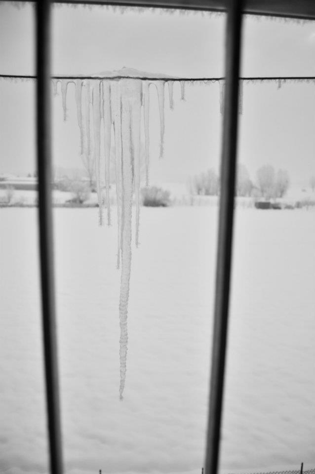 Gelo imprigionato di VioliPaola
