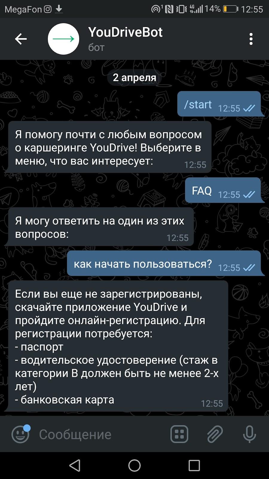 YouDriveBot