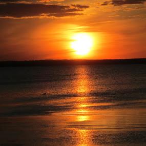 setting sun by Debra Rebro - Landscapes Sunsets & Sunrises (  )