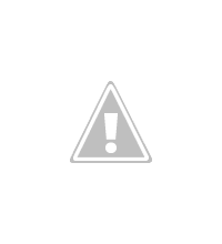 Photo: crimsom rosella, Ensay 2008