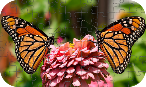 Butterfly Puzzle Jigsaw (Rompecabezas de mariposa) android2mod screenshots 2