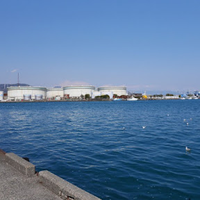 マグロの水揚げ量日本一を誇る清水港で味わう絶品のお刺身定食 / 静岡市清水区の「河岸の市」
