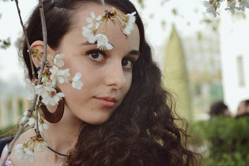 Through the flowers  di sassasphoto