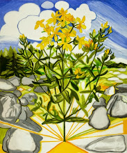 """Photo: St. John's Wort Drawing, pencil and acrylic on mylar, 36"""" x 30"""", 2014, Collection of the artist"""