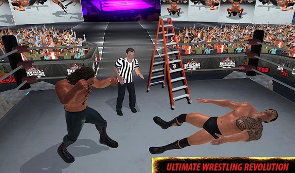 World Wrestling Revolution Stars: 2017 Real Fights apk screenshot