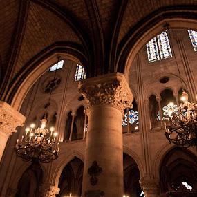 Gothic by Ibrahim Johan - Travel Locations Landmarks ( paris, notre dame, low light )