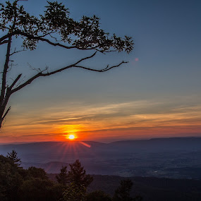 Valley sunset by Paul Glinowiecki - Landscapes Mountains & Hills ( mountain, tree, sunset, valley, landscape,  )