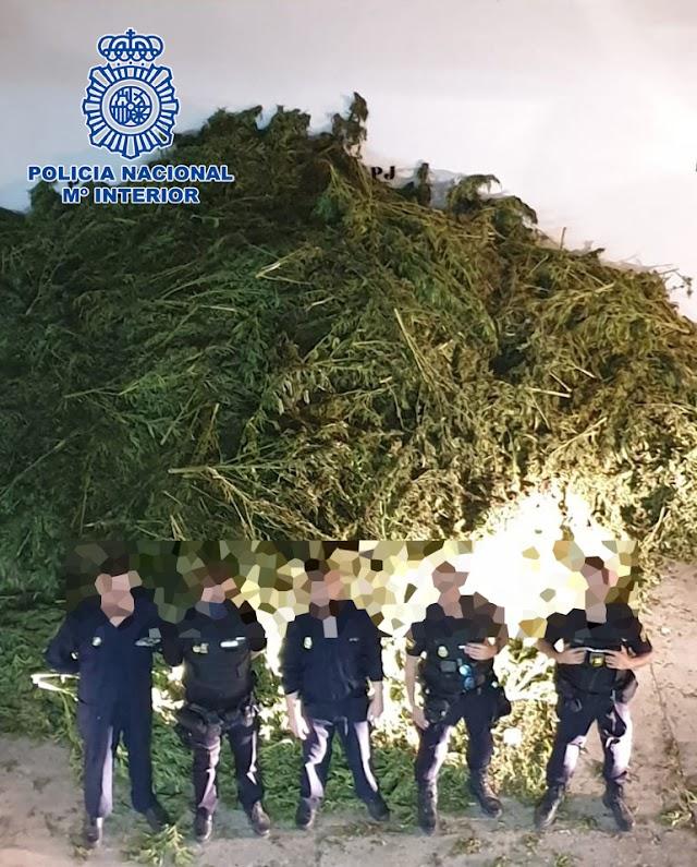 Policías con la marihuana encontrada en El Ejido.