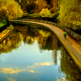 Regent Park - London by Johannes Mikkelsen - City,  Street & Park  City Parks ( water, reflection, park, waterscape, art, , relax, tranquil, relaxing, tranquility )