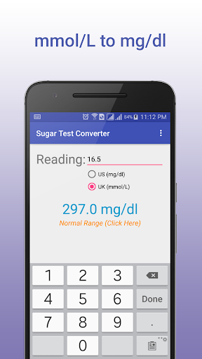 Sugar Test Converter screenshot 2