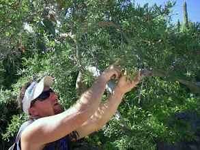 Photo: Carlos knows endemic flora & fauna.