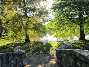 Photo: Trees in sunlight at the base of a stone bridge at Eastwood Park in Dayton, Ohio.