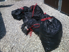 Photo: 8 bags of trash picked up....photo by Ken Derleth