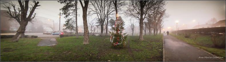 Photo: 2015.12.24