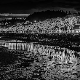 City Of Lights - B&W by Garry Dosa - Black & White Landscapes ( nightphotography, outdoors, reflections, buildings, night, waterfront, lights, low tide )