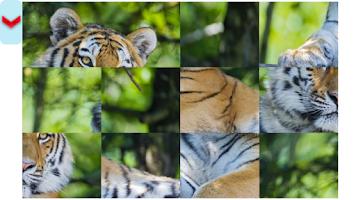 Screenshot of Tiger Puzzles.