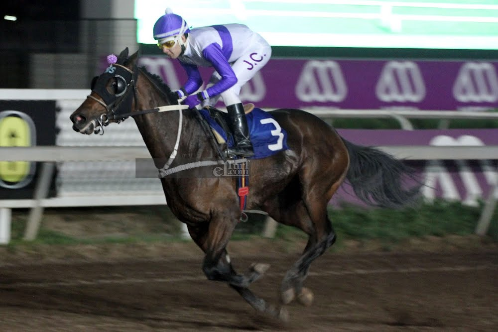 Wine Of Maipo (Father Time) se impuso en Handicap (1000m-Arena-CHS). - Staff ElTurf.com