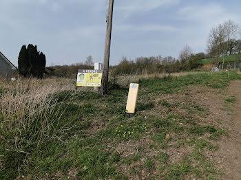 terrain à Raye-sur-Authie (62)