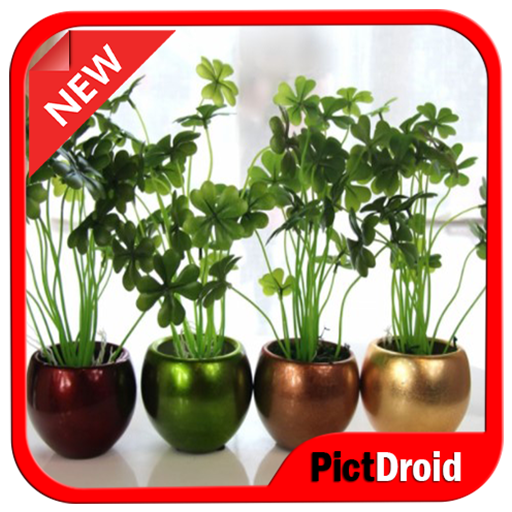 Hydroponic Design Ideas Android APK Download Free By Pictdroid