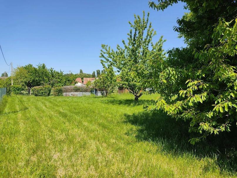 Vente terrain à batir  1018 m² à Mairy-sur-Marne (51240), 58 300 €