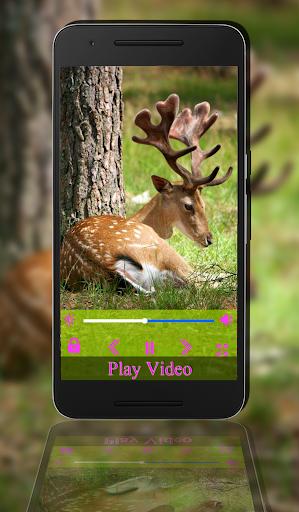 max Player Pro 1.0 screenshots 6