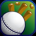 T20 League App 2018 - Live K+ download