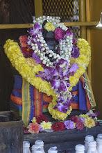 Photo: Ganesh nanti de fleurs. Il en a de la veine.