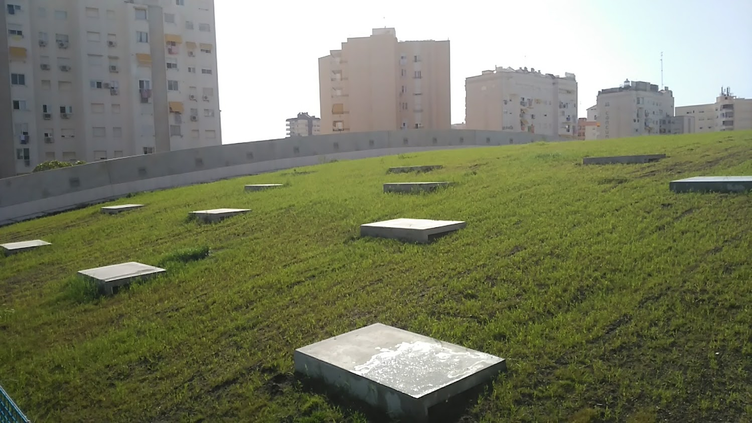 Cubierta extensiva en Gandia, Valencia