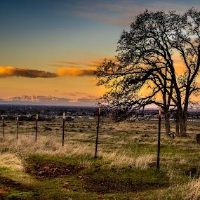Boundaries  by Michael Mercer - Landscapes Prairies, Meadows & Fields