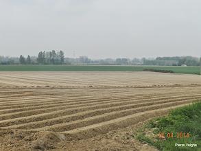 Photo: de aardappelen zijn geplant