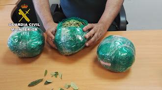 Hojas de coca incautadas durante la intervención de la Guardia Civil en el aeropuerto de Almería.