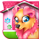 Pet Puppy House Decoration 5.1