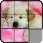 Sliding Puzzle Dogs & Puppies Icon