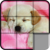 Sliding Puzzle Dogs & Puppies