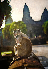Photo: Monkey Love  A male monkey and his mate relax near an ancient naga at the ruins of Angkor Wat in Cambodia.  from the blog at www.stuckincustoms.com