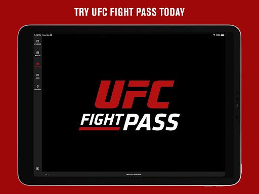 UFC screenshot 12