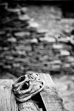 Photo: Old Manali, Manali, Himachal Pradesh, India