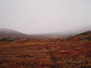 Photo: Greenland - Day 4 - Ole's Lakseelv