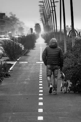 Insieme...lungo la via di restefano60