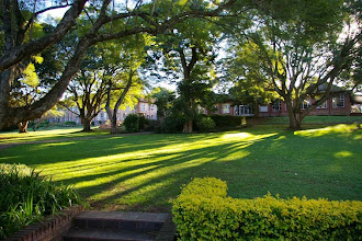 Photo: View from the Williams Classroom Block towards the Dining Halls