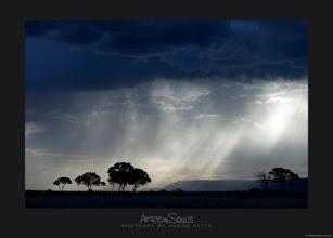 Photo: Rain Time ...