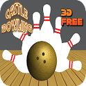 real castle : 3d bowling alley icon