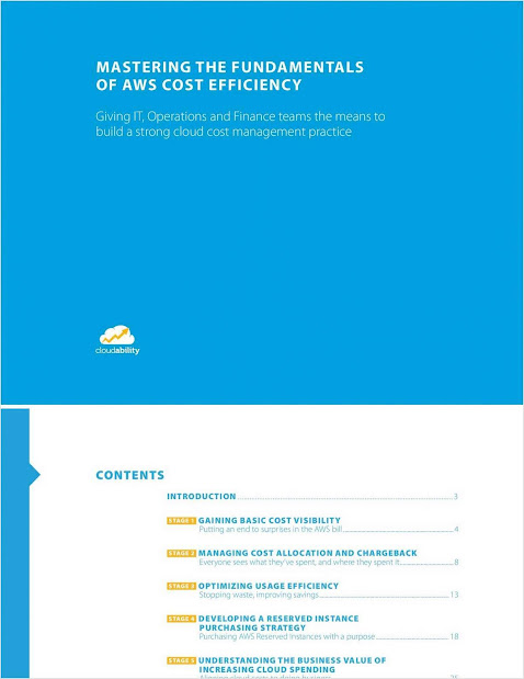 Mastering Fundamentals of AWS Cost Efficiency  for Stronger Cloud Cost Management Practice. Source: Cloudability