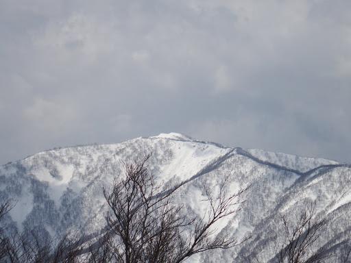 上谷山アップ