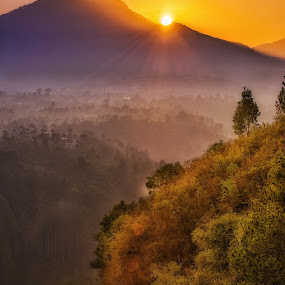 Enchanting Tebing Keraton by Alexander Nainggolan - Landscapes Mountains & Hills ( hills, tahura, mountain, nature, jawabarat, forest, tebing keraton, sunrise, landscape, misty,  )